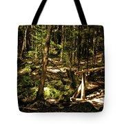 Deep Woods Trail Tote Bag