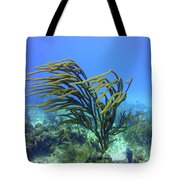 Deepwater Gorgonia Just Flowing In The Wind Tote Bag