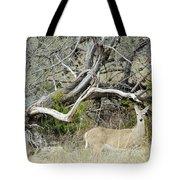 Deer 009 Tote Bag