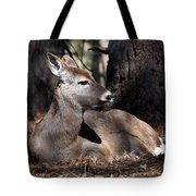 Deer 336 Tote Bag