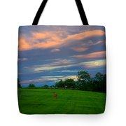 Deer And Rising Moon Tote Bag