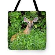 Deer Beauty II Tote Bag