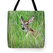 Deer Bedded Down During Mid Day Tote Bag