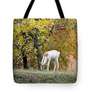 Deer Boy Tote Bag