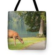 Deer By Crescent Lake Tote Bag