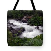 Deer Creek 07 Tote Bag