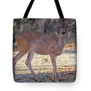 Deer Doe - 2 Tote Bag