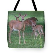 Deer Family Out For Evening Stroll Tote Bag