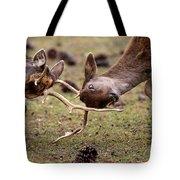 Deer Games Tote Bag