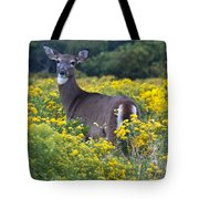 Deer In A Field Of Yellow Flowers Tote Bag