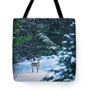Deer In A Snowy Glade Tote Bag