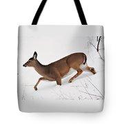 Deer In Deep Snow Tote Bag