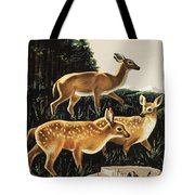 Deer In Forest Clearing Tote Bag