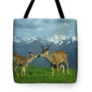 Ma-181-deer In Love  Tote Bag
