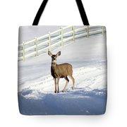 Deer In Snow Covered Road Tote Bag