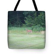 Deer In The Midst Tote Bag
