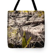 Deer In The Wood Tote Bag