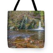 Deer Leap Falls  Tote Bag