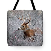 Deer On A Frosty Morning  Tote Bag