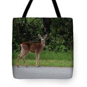 Deer On Road Tote Bag