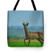 Deer On The Field Tote Bag