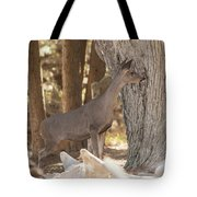 Deer On The Look Out Tote Bag