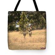 Deer Tails Tote Bag