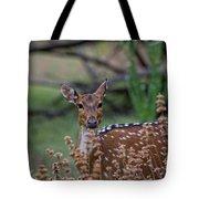Deer V5 Tote Bag