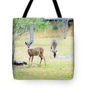 Deer18 Tote Bag