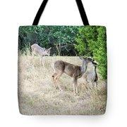 Deer24 Tote Bag
