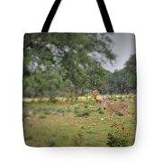 Deer48 Tote Bag