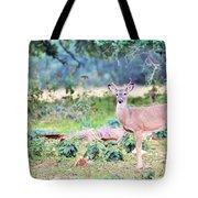 Deer50 Tote Bag
