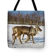 Deers Running On Snow Tote Bag