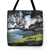Del Valle Reservoir Tote Bag