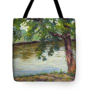 Delaware River At Washington's Crossing Tote Bag