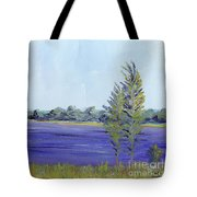 Delaware River Tote Bag