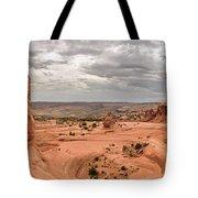 Delicate Arch Panoramic Tote Bag