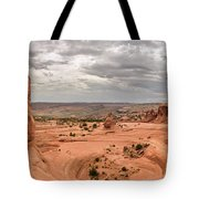 Delicate Arch Panoramic Tote Bag