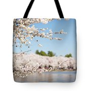 Delicate Blossoms Over The Tidal Basin Tote Bag