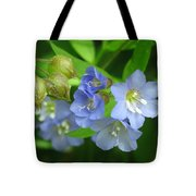 Delicate Blues Tote Bag