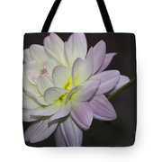 Delicate Dahlia Balance Tote Bag