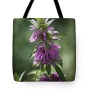 Delicate Desert Flower Tote Bag