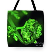 Delicate Fern Unfolding Tote Bag