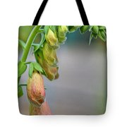 Delicate Hanging Blossom Tote Bag