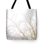 Delicate January Tree Branches Tote Bag
