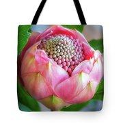 Delicate Pink Bud Waratah Flower Tote Bag