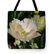 Delicate Pink Tulip 2 Tote Bag