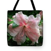 Delicate Pinks In Rain - Flower Photography Tote Bag