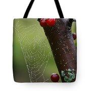 Delicate Spider Weave Tote Bag