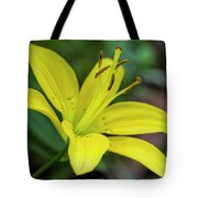 Delicate Yellow Oriental Lily Tote Bag
